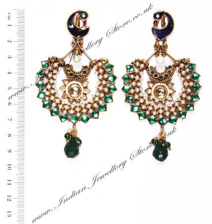 Large Peacock Earrings EAGP03820